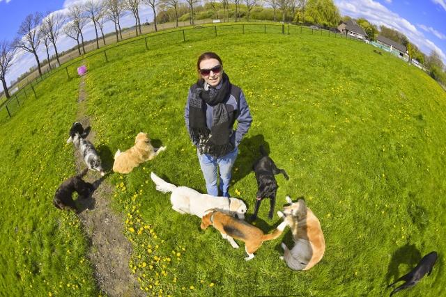2017-04-19-gerjon-honden-44_1-640x427